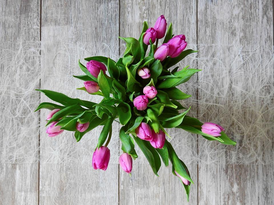 Apie gėles – praktiškai ir paprastai